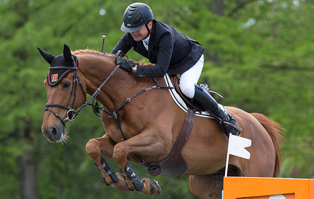 Photographie Eric KNOLL. Palaiseau 2014. CSI 2*. Jumping. Equestrian Event. Christian HERMON (FRA). PHEDRAS DE BLONDEL
