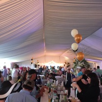 Guarantor Tent was the way to go!